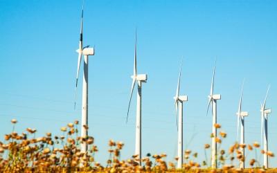 Siete datos que no sabías de la energía eólica