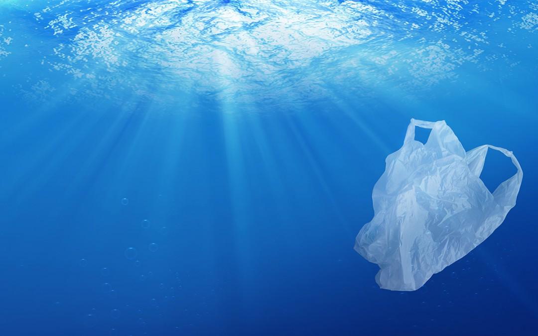 ¿Cómo podemos reducir la contaminación en los océanos?