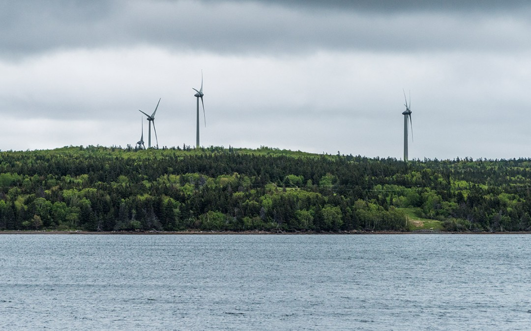 Estas son las principales fuentes de energía renovable